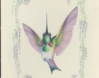 HUMMINGBIRD NOTECARDS