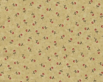 Quilt Fabric | Everlastings Fabric |  Sandy Gervais | Moda | Floral Tiny Print | Scant Half-Yard | Quilters Fabric Stash | Tan Red Green