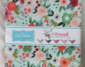 """SALE 10"""" inch squares ON TREND charm pack fabric by Riley Blake by My Mind's Eye - Jen Allyson"""