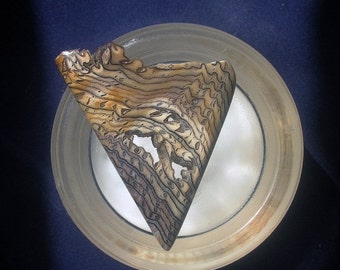 Holiday Sale 2016 25% OFF Collector Quality Hell's Canyon Petrified Wood Cabochon Fossilized Wood Cabochon Herringbone Pattern