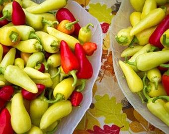 Organic Santa Fe Grande Chili Pepper Heirloom Vegetable Seeds