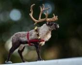 Dollhouse Miniature Reindeer Artist Furred OOAK Christmas Santa