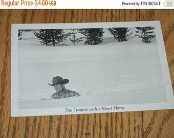 SALE- Unused Vintage Postcard-- The Trouble with a Short Horse-- Duckboy Cards