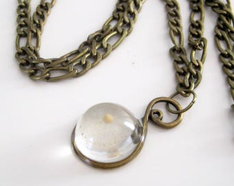 mustard seed in resin pendant necklace - antiqued brass or silver, long pendant chain