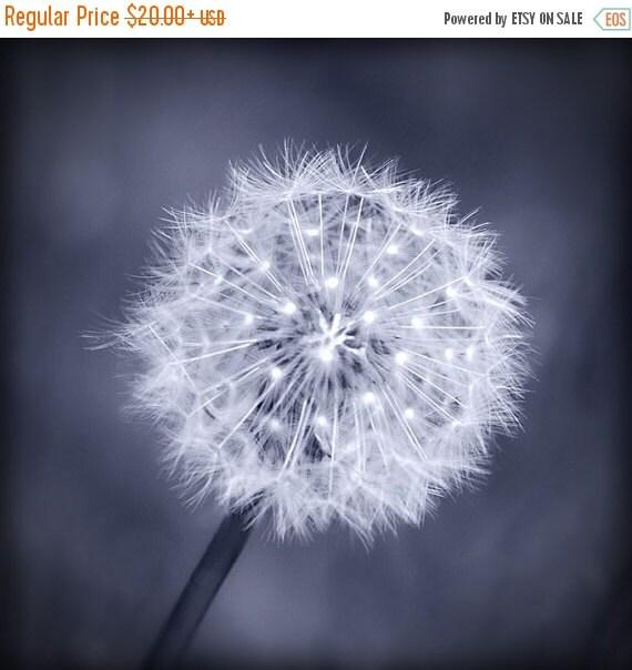ON SALE Dandelion Black and White Photograph, Woodland Fine Art Photograph, Classic Monochrome Nature Fine Art Print