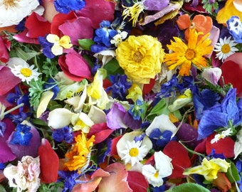 Wedding Confetti, Dry Petals, Dry Flowers, Wildflowers, Flower Girl, Real, Wedding Decor, Aisle Decor, Table Decor, 80 US cups of Confetti
