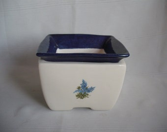 Square Self Watering African Violet Pot/Planter / With Bluebonnets