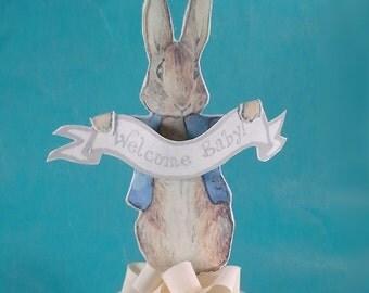 Shabby Chic Peter Rabbit, medium fabric Peter Rabbit baby shower cake topper decoration A185