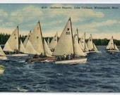 Sail Boat Yacht Yachting Regatta Lake Calhoun Minneapolis Minnesota 1956 postcard