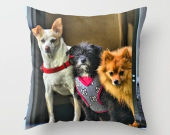 Naughty Dogs Pillow Cover, Throw Pillow, Pet Decor, Dog Decor, Home Decor, Nursery Decor
