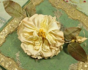 Antique Edwardian 1900s cloth rose millinery velvet trim trim blush stamen rosebud flower flower making supply 1900s