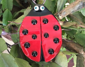 Ladybug - Fused Glass little cutie!