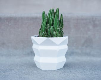 Nona - Medium Succulent / Plant Planter