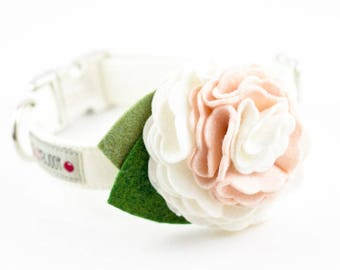 Solid Ivory Dog Collar with Flower