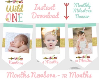 WILD ONE Birthday party decorations Wild One Month Photo banner Monthly Photo banner Arrow Month banner Girl Tribal Milestone banner