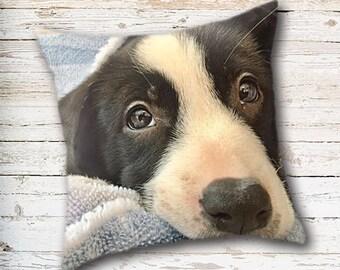 Border Collie, Throw Pillow Cover, Puppy Pillow Cover, Dog Pillow Cover, Dog Home Decor, Black and White Dog, Cute Puppy, Nursery Decor