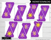 Rapunzel Birthday Party- Printable 'Best Day Ever' Sun Flag Banner by Fara Party Design | Tangled Party