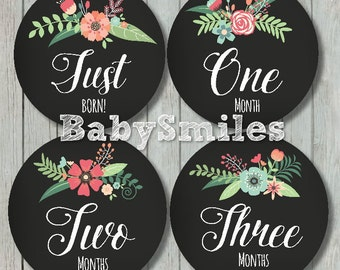 FREE GIFT Monthly Baby Stickers Baby Month Stickers Baby Girl Month Stickers Monthly Bodysuit Stickers Monthly Milestone Chalkboard Floral