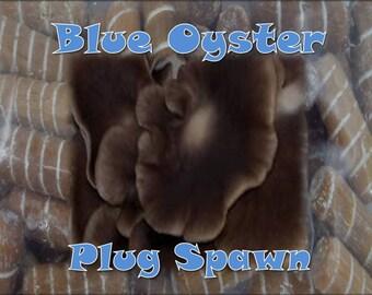 Blue Oyster Mushroom Plug Spawn 500 Count Bag Log Cultivation