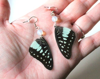 Black and Blue Butterfly Earrings, Nature Jewelry, Real Butterfly Wing Jewelry