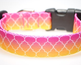 "Geometric Ombre 1"" Wide Adjustable Dog Collar"