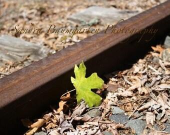 Autumn's Railway