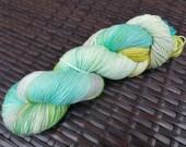 Scandinavia: 100g hand painted superfine merino/nylon sock yarn