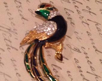 Vintage Enameled & Rhinestone Fancy Bird Brooch