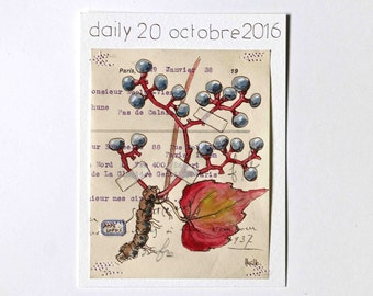 daily 20 octobre   2016