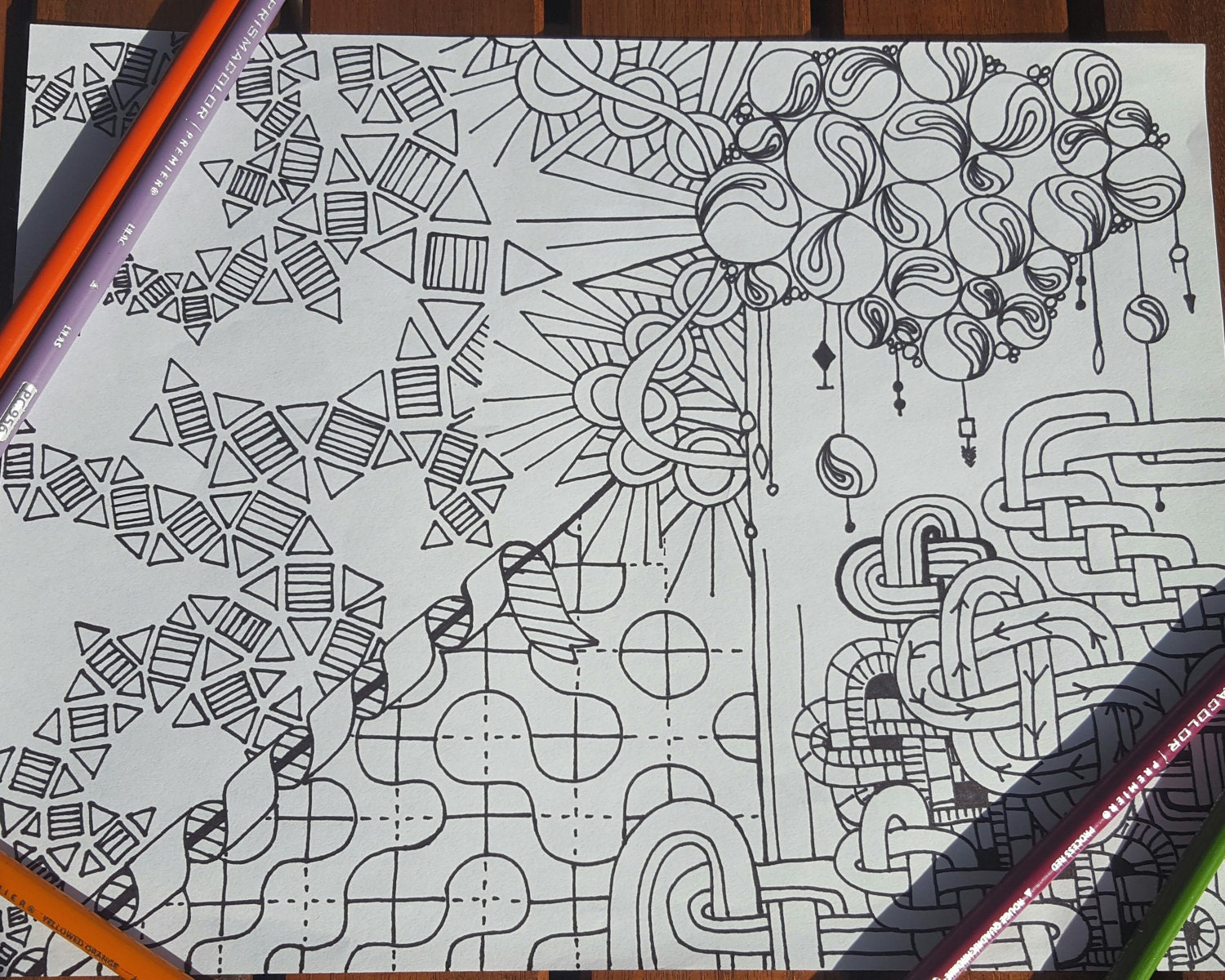 detailed coloring page detailed coloring page printable