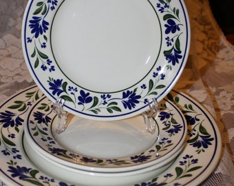 Vintage Salzburg Pattern Plates by Churchill China made in England