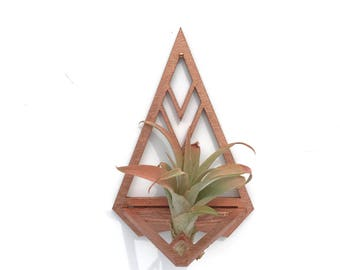 Triangular Air Plant Holder with Air Plant | Wall Hanging | Botanical Decor