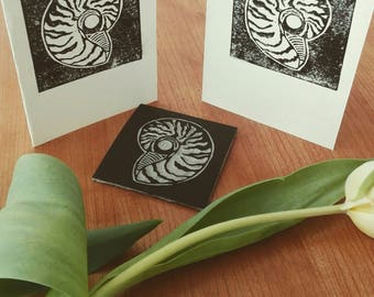 Nautilus Shell Card