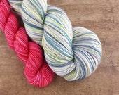 SALE Winter Wonderland heel/toe sock set - superwash merino/nylon sock yarn (463 yd skein w/matching 100 yd skein)