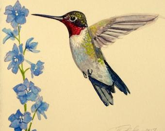 ruby throated hummingbird original watercolor painting bird paintings small original hummingbirds