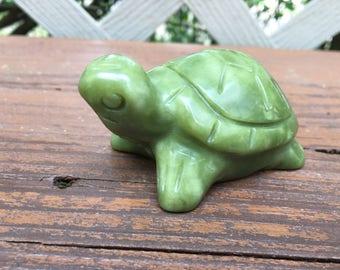 Serpentine Turtle