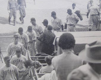 1940's Chicago Cubs Head For Dugout Ballpark Snapshot Photograph - Free Shipping
