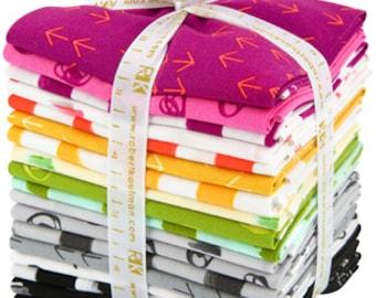 Color Dash by Heather Jones for Robert Kaufman, complete collection 18 Fat Quarters