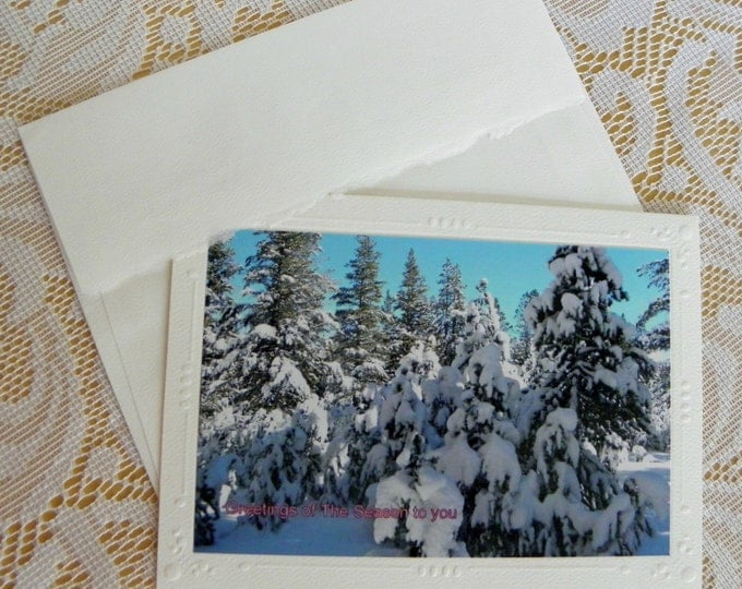 HOLIDAY Greeting Cards - 12 Cards and Envelopes AND Free Shipping too!
