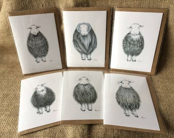 Pack of six mixed Herdwick sheep greetings cards, Herdwick cards, sheep cards