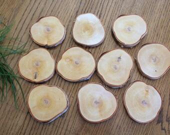 12 x 4'' Birch Wood Slices / Odd Shaped Birch Slices / Large Wood Slices / Non Circular Wood Slices / Wood Slice Crafts