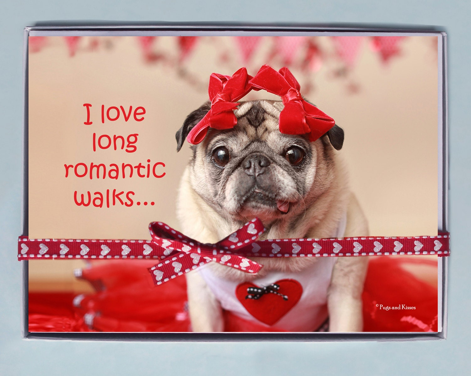 BOX OF 10 5X7 CARDS Romantic Walks  Funny Valentines Day Card