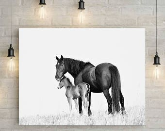 Horse Fine Art Print - Horse Photography - Mare and Foal - Wall Art