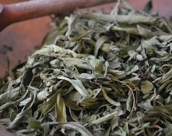 ORGANIC STEVIA herb • Stevia rebaudiana • Dried • Leaf • Asteraceae • Non-irradiated • Non-gmo Herbs • Whole Herb • USA Grown • 1oz