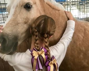 Equestrian Hair Bows, Purple Sheer & Gold, Fancy, Rapunzel Colors, Bowdangles Show Bows