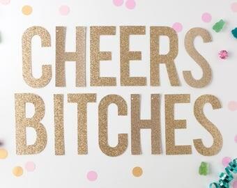 Cheers Bitches Glitter Banner, Cheers Bitches Gold Glitter Banner, Ladies Night Decor