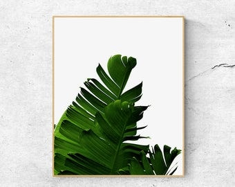 Palm tree print, Banana leaf print, Wall art printable, Scandinavian print, Wall art prints, Tropical leaf print, Botanical print, Wall art