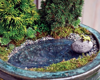 Fairy Garden  - Frog Pond - Miniature