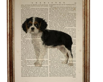 Cavalier King Charles Spaniel Dog, beautiful Art Print on Upcycled Dictionary Book page 8'' x 10'' inches