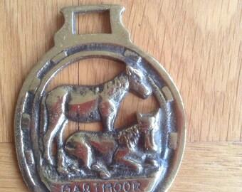 Dartmoor Horse Brass